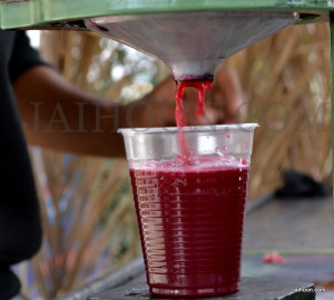 Pomegranates juice for sale in Jericho.