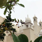 Nature, like Masjid, fire the spiritual oomph of the Believer: Jaihoon
